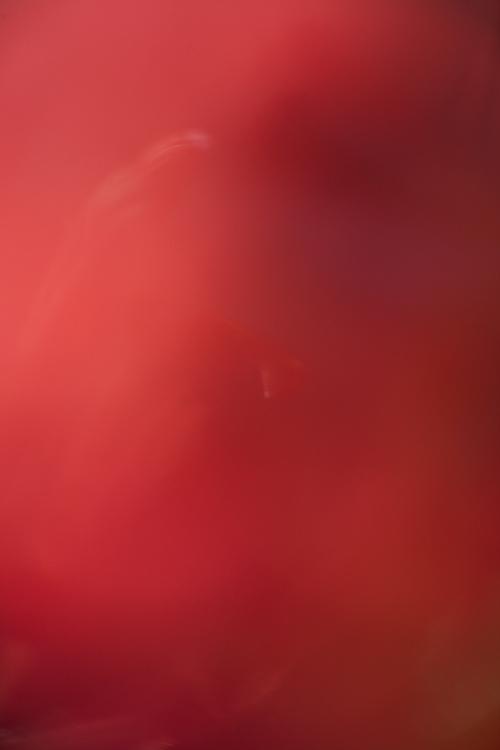 ZM8Y7229.jpg